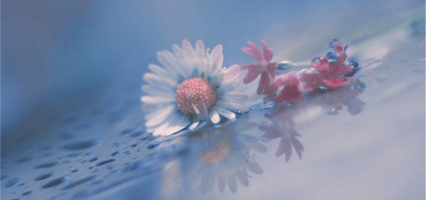Нежность соединяет нас с Богом без всяких посредников